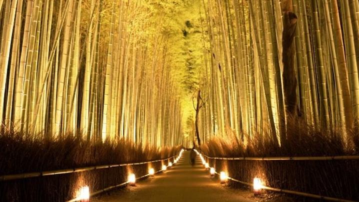 Kyoto-Arashiyama-Hanatouro